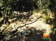 آبشار و دره ایگل